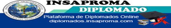 Aula Virtual para Diplomados en Linea